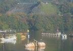 勝瀬橋選手11 2012-11-26T03:08:34.000Z