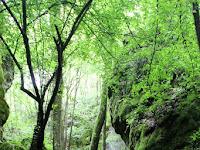 03 A táj nagyon vadregényes.JPG