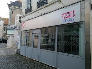 locaux professionnels à Saint-Aignan (41)