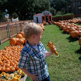 Pumpkin Patch 2015 - 100_0410.JPG