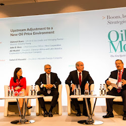 Upstream Adjustment to a New Oil Price Environment-1.jpg