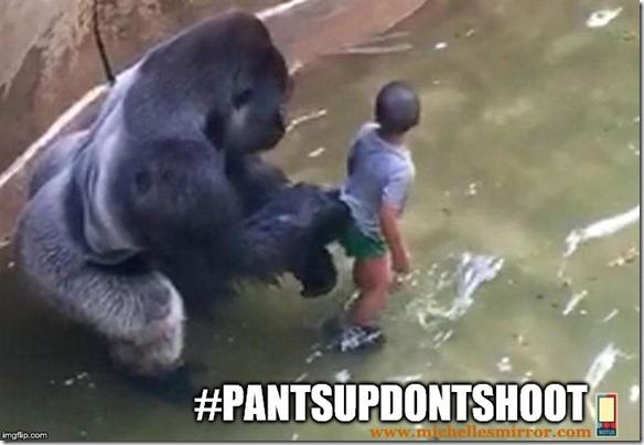 #pantsupdontshoot2