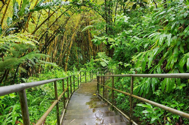 06-23-13 Big Island Waterfalls, Travel to Kauai - IMGP8834.JPG