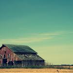 JaneCarlson-Warren County BarnKirkwood, Illinois.JPG