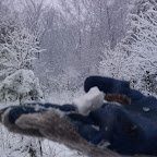 Зимняя уборка в Дендрарии 036.jpg