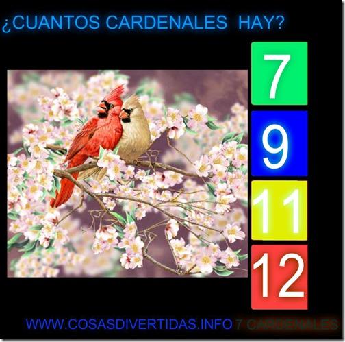 cardenalescosasdivertidas