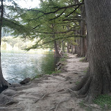 Fall Vacation 2012 - IMG_20121022_145208.jpg