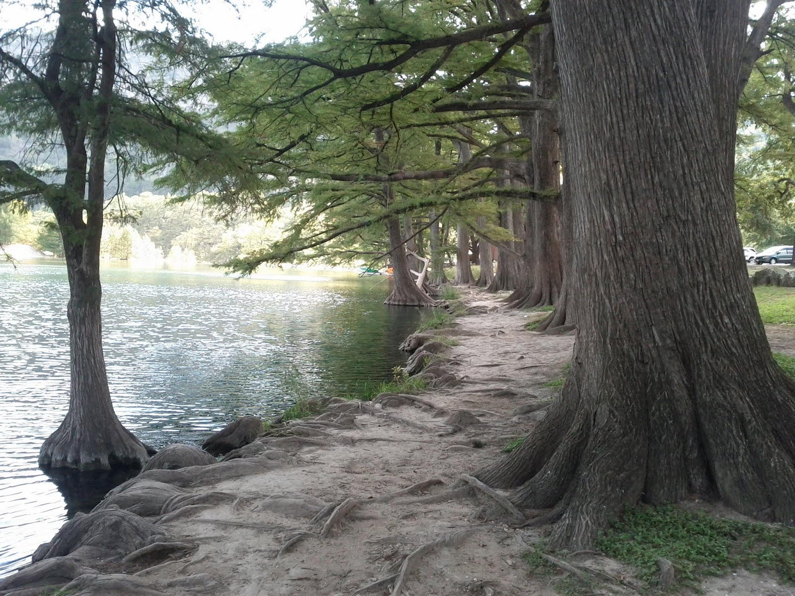 Fall Vacation 2012 - IMG_20121022_145208.jpg