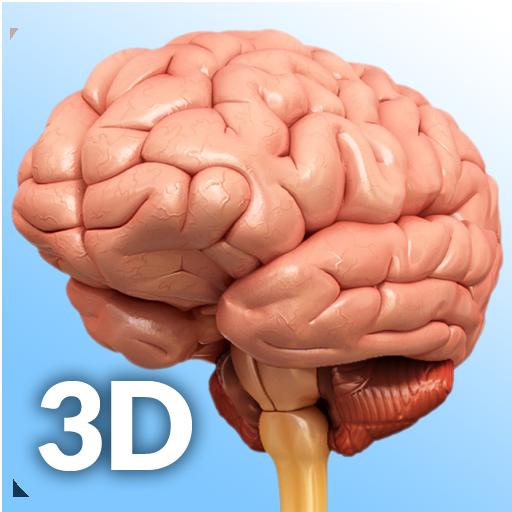 Baixar Brain Anatomy Pro. para Android