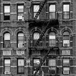 NY (16 of 39).jpg