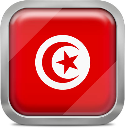 Tunisia square flag with metallic frame