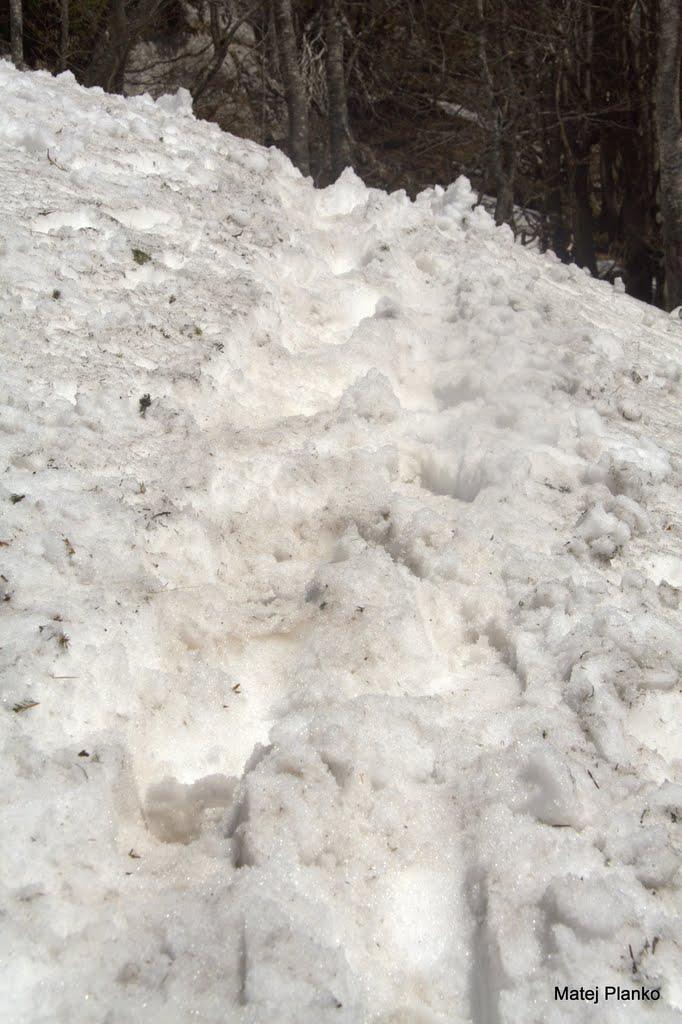 Pa spet sneg ...