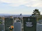 Blick vom Friedhof auf die Wienerberg City