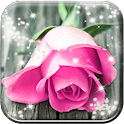 Pink Rose Live Wallpaper HD icon