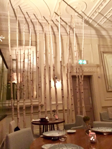 Birch trunks in Icelandic Texture restaurant by Aggi Sverrison in London