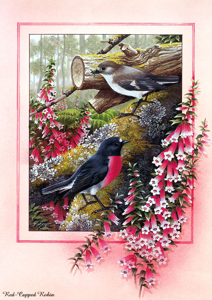 Most Amazing And Famous Birds Paintings.2