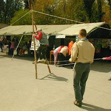 Dan tabornikov, Ilirska Bistrica - 3.jpg