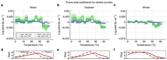 Simulated yield responses to temperature under future climate change in rainfed counties. Columns are maize (a,d), soybean (b,e) and wheat (c,f). a–c show regression coefficients and d–f display temperature histograms for the historic (dashed grey) and future (solid red) periods; future climate is evaluated over 2071–2099 based on RCP8.5. Green tone lines in a–c are ensemble yield responses to temperature under rainfed conditions. Blue tone lines are ensemble yield responses under irrigation. Solid lines are derived with fixed present-day [CO2], while dotted lines include elevated [CO2] according to RCP8.5. Shaded areas are 95% confidence intervals. Graphic: Schauberger, et al., 2017 / Nature Communications