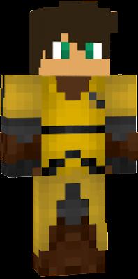 Hufflepuff Quidditch Nova Skin