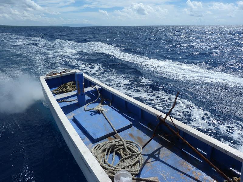 Dauin, Dumaguete, APO Island (Negros) - philippines%2Bdeux%2B692.JPG