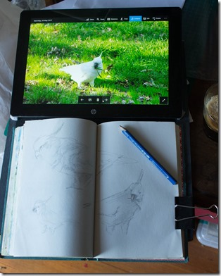 Using the tablet to show reference with small sketchbook also attached to drawingboard