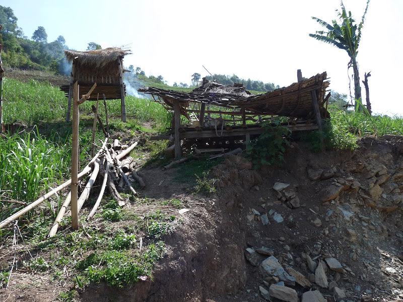 Chine: randonnée xishangbanna, région de Bada - Picture%2B830.jpg