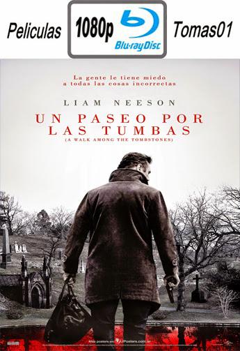 Un Paseo por las Tumbas (2014) BRRip 1080p