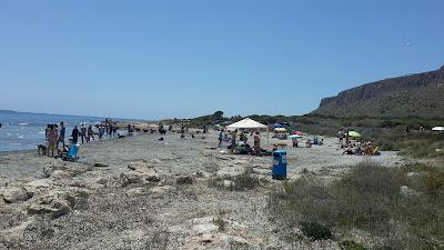playa perros santa pola