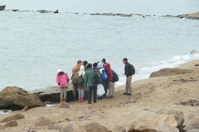 King/Robinson Students Visit Hammonasset - P1020453.JPG