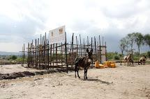 Cedule psaná v amharštině upozorňuje příchozí, aby si nezapomněli před napuštěním vody důkladně omýt kanystry a dodržovat základní hygienu, aby donesli domů vodu čistou a nezávadnou. (Foto: Monika Ticháčková)