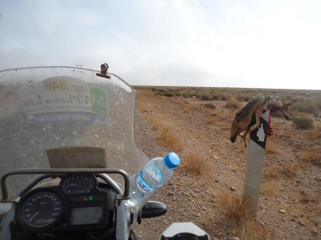 Marrocos 2011  DSC03514