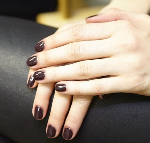 Best Nail Polish Colors 2016: Stylish And Best Nail Polish Colors For 2016