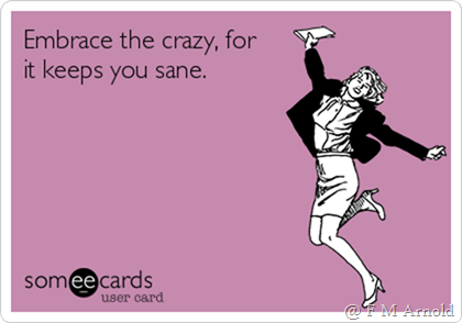 embrace-the-crazy-for-it-keeps-you-sane-5ca31
