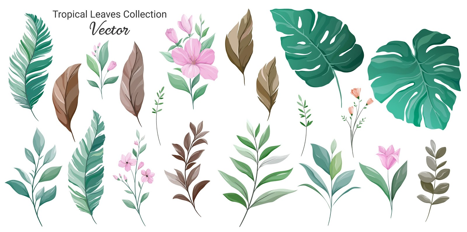 Set Of Exotic Leaves Element Vector Floral Free Download Vector CDR, AI, EPS and PNG Formats