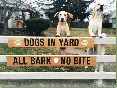 bark bite