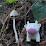 Armando Mosqueda's profile photo