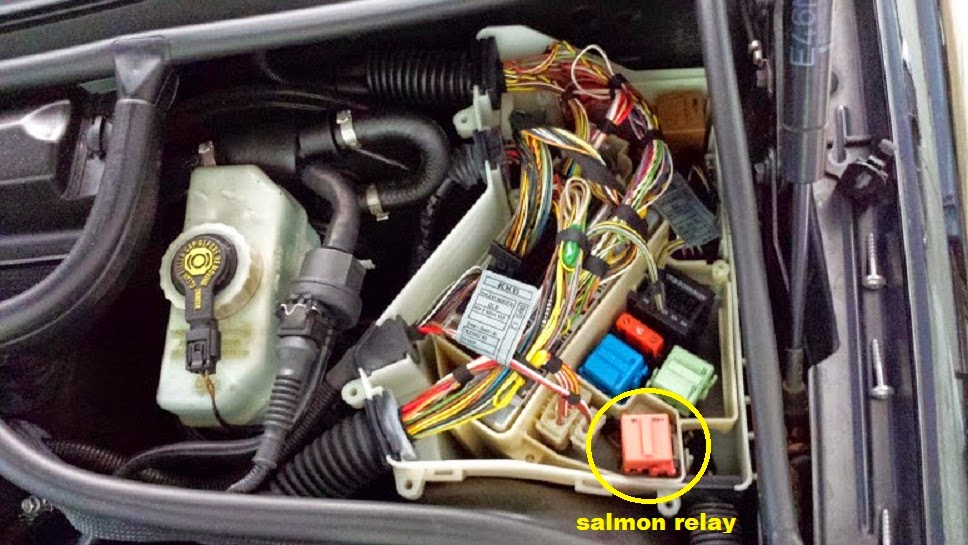 e46 m3 smg salmon relay diy bmw e46       m3 support BMW 325I Fuse Box Layout 2001 BMW 325I Fuse Box Diagram