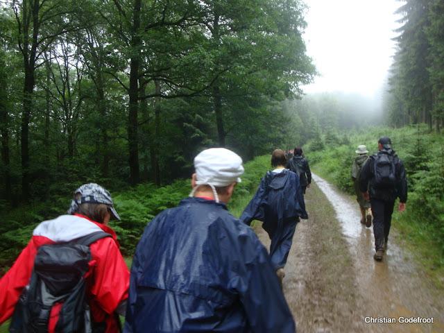 MESA, Ardennes belges, 1-4 x 30km, 26-29 juin 2012 DSC08933
