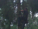 bomen vellen 1.JPG