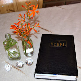 Bible our strength for everyday by Melody Pieterse - Artistic Objects Other Objects (  )