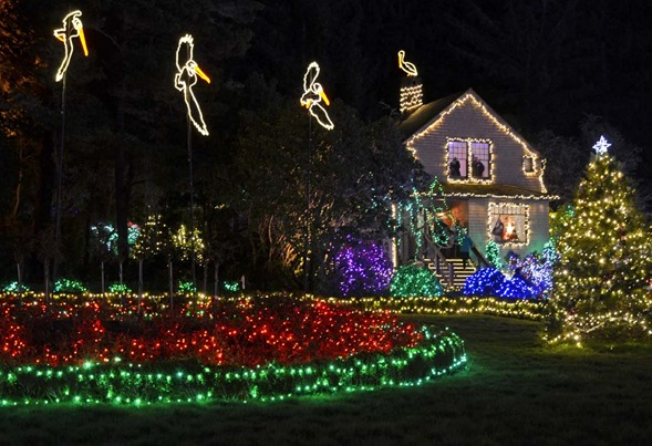 Shore Acres Lights4