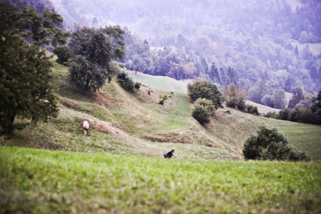 Mysterious Slovenia - Vika-13.jpg