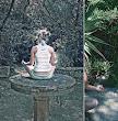 Meditation In Garden