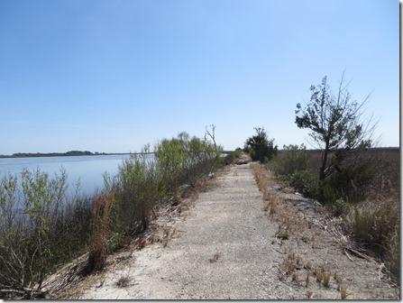 Skidaway_island_biketrail2