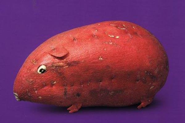 Food Art - Yam Sweet Potato Mouse