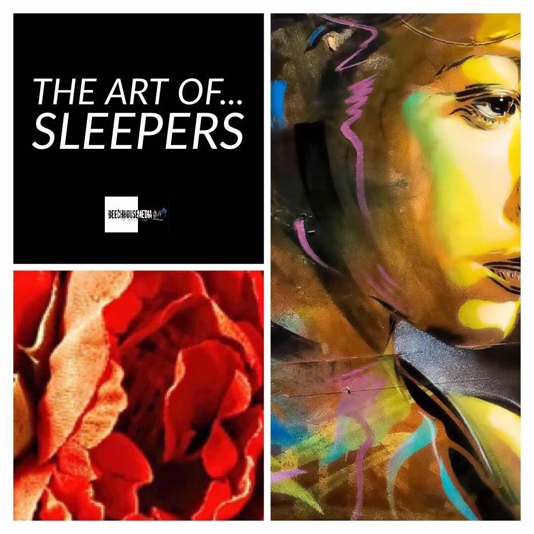 sleeper art