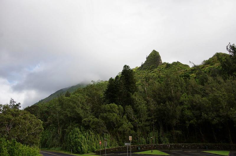 06-18-13 Waikiki, Coconut Island, Kaneohe Bay - IMGP6952.JPG