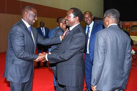 Ruto-Kalonzo and Mudavadi alliance to be unveiled officially before the end of next year.