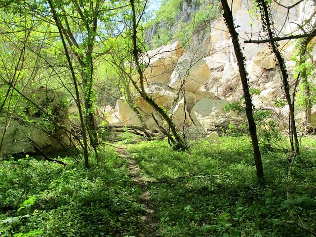 Basarbovo, Parcul Rusenski Lom, prabusiri de calcar