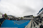 Ambiance - Hobart International 2015 -DSC_3275.jpg